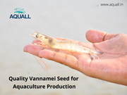 Get aquaculture seeds from best sellers online in India – Aquall