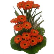 Best flower delivery Delhi